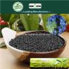 Il carbonio di Kingeta ha basato il fertilizzante composto NPK 15-5-10 per frutta