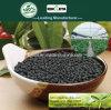 Il carbonio di Kingeta ha basato il fertilizzante composto NPK 22-7-11 per la pianta
