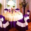 Pano da mesa redonda e tampa 29 da cadeira