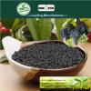 Fertilizzante granulare della condizione del fertilizzante organico del rifornimento di Maufacturer