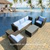 Sofà di vimini del rattan della casa dell'hotel del patio del giardino impostato - mobilia esterna