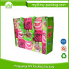 Легко снесите прокатанный промотированием Non-Woven мешок покупателя с цветастым печатание