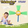 Het Stuk speelgoed van het Jonge geitje van de Trein van de Hersenen van de beginner in de Spelen van het Leerplan van het Kinderdagverblijf