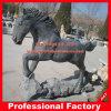 Het Beeldhouwwerk van het Paard van het Standbeeld van het Paard van het graniet voor de Decoratie van de Tuin