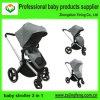 Baby-Spaziergänger