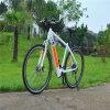 Bicicleta elétrica 250W MTB Ebike da montanha popular de France e de Alemanha