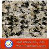 Azulejos Polished de piedra naturales amarillos de Grainte (DES-GT041)