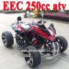 Nuevo CEE vehículo todo terreno 250cc