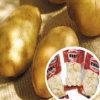 Verse Aardappel met Uitstekende kwaliteit