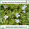 O TCM Bacopa Natural Extrato de pó com ensaio Bacopaside/Bacoside activa