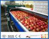 технологическая линия машина яблока яблочного сока обрабатывая