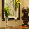 Mestiere europeo nobile del vaso di fiore di cristallo