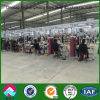 Gruppo di lavoro della struttura d'acciaio di alta qualità con basso costo in Etiopia
