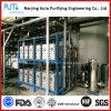 Sistema del módulo del tratamiento de aguas IED