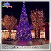 옥외 정연한 휴일 PVC 거대한 LED 크리스마스 나무 LED 빛