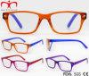 Новые яркие моды чтения очки для женщин (WRP7081126)