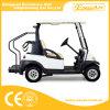 Luxe 2 Elektrisch Golf Seaters Met fouten
