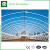 農業のための情報処理機能をもったPo/のPEのフィルムの温室