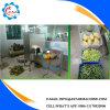 Machine d'écaillement pour le melon de miellée