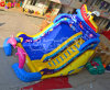 Kids & Adults Chsl462를 위한 돌고래 Giant Inflatable Slide