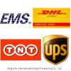 Nachtpaket-Verschiffen-Anlieferung DHL-UPS ausdrücklich von China nach Argentinien, Peru