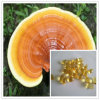 Petrolio della spora di Reishi del petrolio della spora di Ganoderma del CO2/estratto ipercritici di Reishi