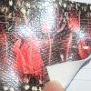 Signora di cuoio sintetica Fashion Handbags dell'unità di elaborazione impressa reticolo della piuma della Alto-Sbucciatura