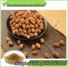 Производитель фруктов Galangal Sharpleaf извлечения порошка/ Alpinia Oxyphylla