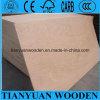 Triplex van het Gezicht van Okoume van het Triplex van de eucalyptus het Hoofd Materiële
