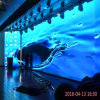P6 높은 정의 광고를 위한 실내 임대 풀 컬러 LED 스크린 전시