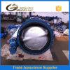 Pn10and Pn1 6 Roheisen-Drosselventil für Wasserwerk