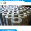 Rete metallica saldata dell'acciaio inossidabile della rete metallica dell'acciaio inossidabile
