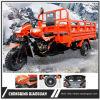 최신 판매 중국 Chongqing 세발자전거 공장 250cc 화물 세발자전거