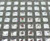 Bergkristal van het Netwerk van de Stok van het Bergkristal van de Moeilijke situatie van het Bergkristal van de Stok van het kristal het Hete Achter Stikkende voor Toebehoren (tp-087)