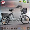 20 pulgadas 250W triciclo de carga de 3 ruedas bicicleta eléctrica para adultos