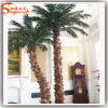 Home Decoration Artificial Washington Palm Tree