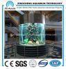 Tanque de peixes/fabricante acrílicos do aquário