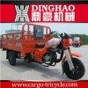 Dinghao 3 짐수레꾼 자동차 인력거