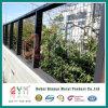 Покрынная PVC сваренная загородка ячеистой сети для загородки сада