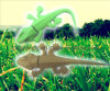Azionamento di gomma di memoria Flash del USB del Gecko di piena capacità (U616)