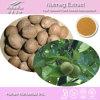 Extrait pur de noix de muscade de 100% (taux : 4:1, 5:1, 10:1, 20 : 1) - Fournisseur de Nutramax
