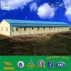 De prefab Geprefabriceerd huizen van de Container van het Bureau van de Bouw van het Huis van de Bouw van de Structuur van het Staal Modulaire