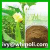 Hoher Reinheitsgrad-natürliche Pflanze extrahiert Eibisch-Auszug