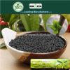 Il carbonio di Kingeta ha basato il fertilizzante composto NPK 8-6-18 per il semenzale