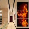 Moderne Wand-Kunst-Ausgangsdekoration druckte Ölgemälde-Abbildung-Hallen-Segeltuch-Drucke