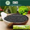 Il carbonio di Kingeta ha basato il fertilizzante composto NPK 15-5-10 per tè