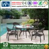 Tabella pranzante e presidenza di vimini del rattan del PE del giardino per mobilia esterna (TG-1031)