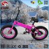 Vélo se pliant électrique de gros pneu d'En15194 250W mini pour la fille