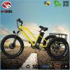 뚱뚱한 타이어 500W 모터 3 바퀴 전기 세발자전거 장비