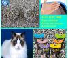 Constructeur de groupement superbe de litière du chat de bentonite
